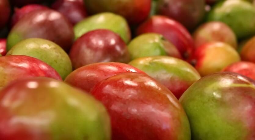 манго на бали