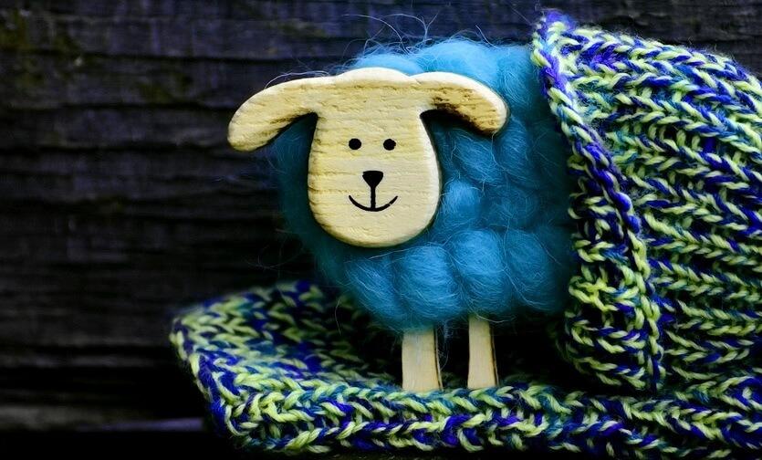 шоппинг овечья шерсть