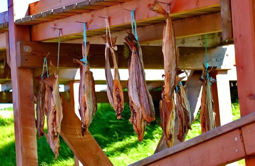 сушеная рыба в исландии