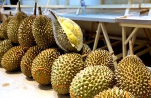 дуриан в малайзии