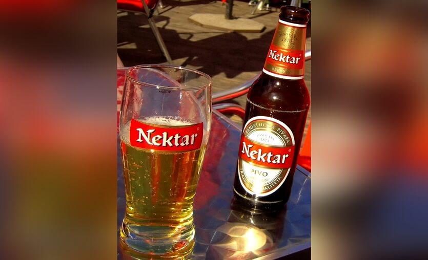 пиво нектар из боснии