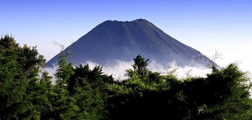 сальвадор фото