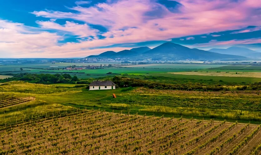 Купить ферму в венгрии туры в дубай цены из спб