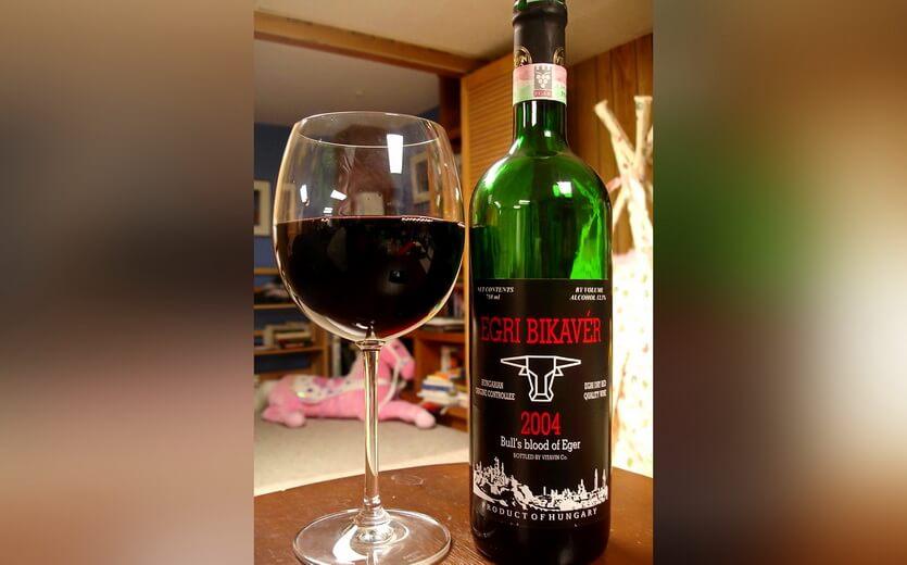 бычья кровь вино