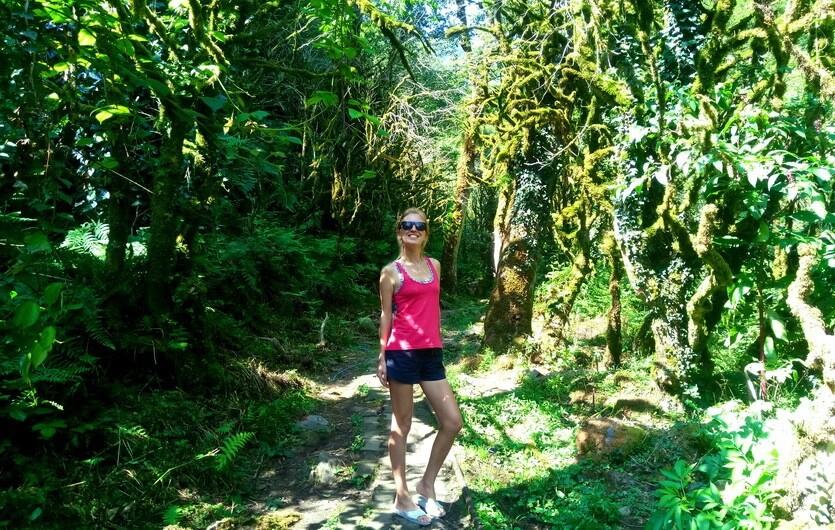 сказочный лес мачахела
