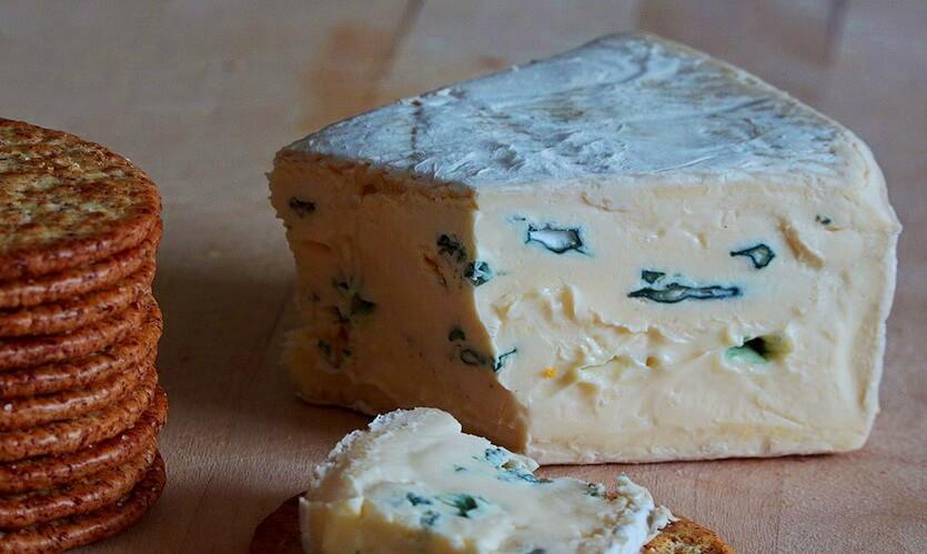 камбоцола сыр с плесенью