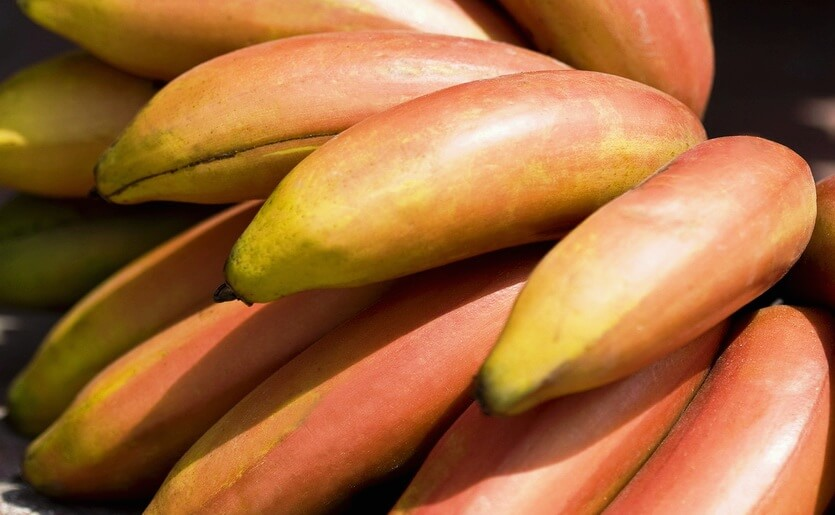 доминиканские бананы