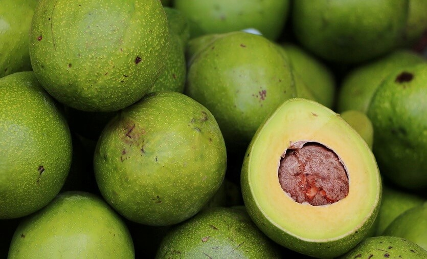 авокадо доминиканская республика
