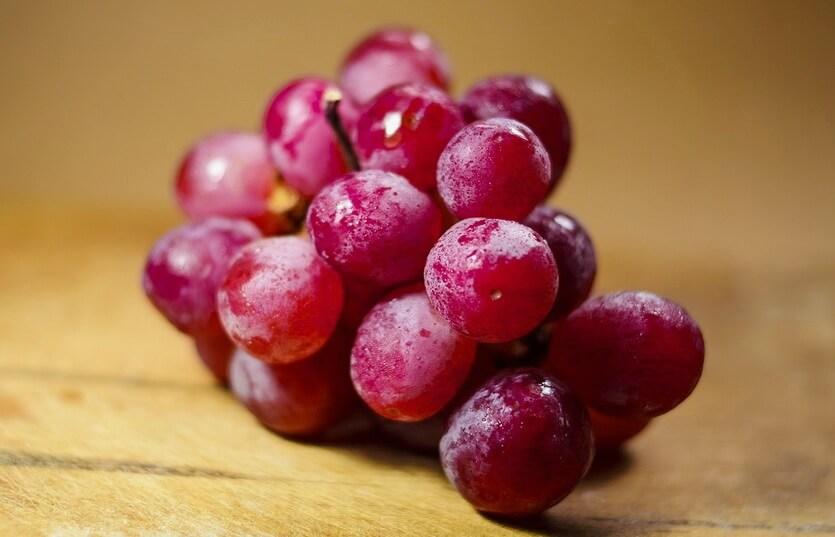 виноград египет александрия